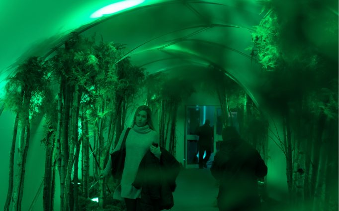 entrance tunnel with plants and green lights