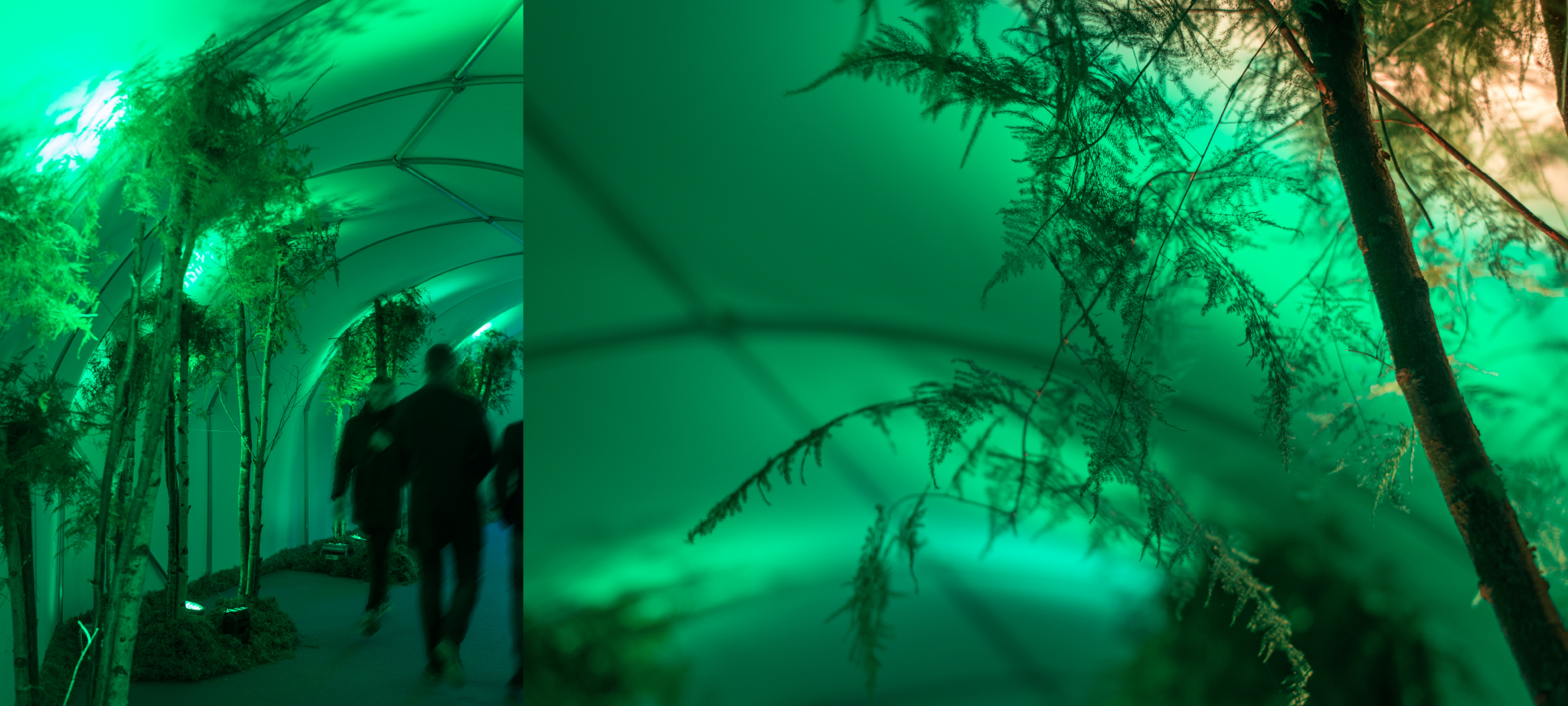 close up of the green entrance tunnel