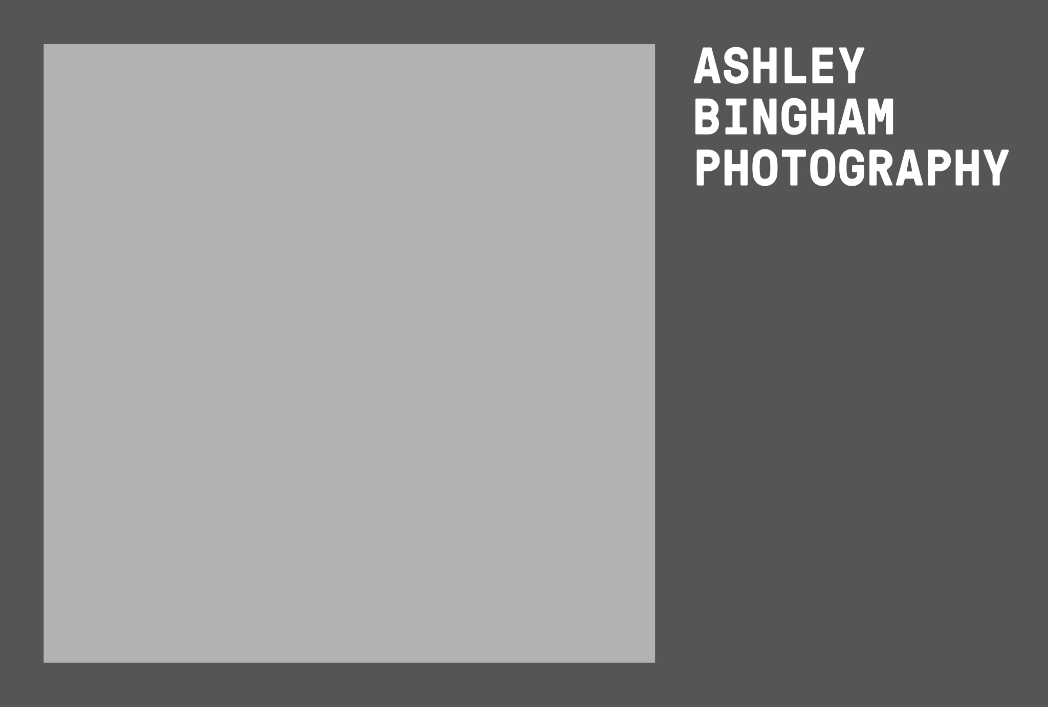brand identity for 'ASHLEY BINGHAM PHOTOGRAPHY' in light and dark grey